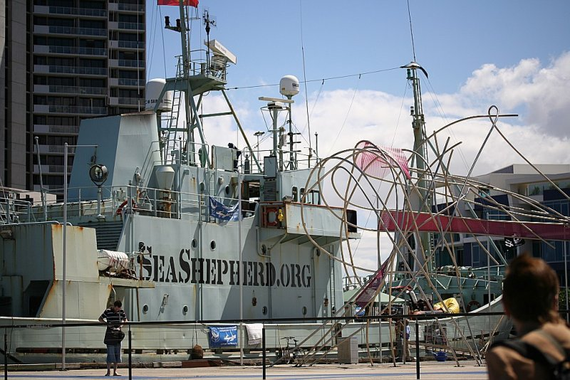 Melbourne Sea Shepherd.org