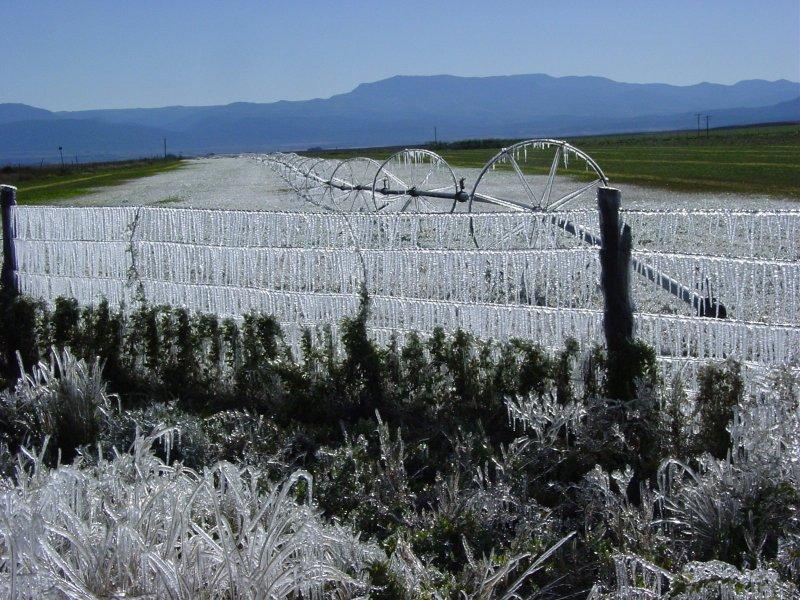 Ice cycle fence !!!!