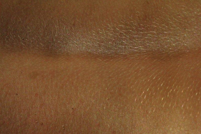 peau<br><b>skin</b>