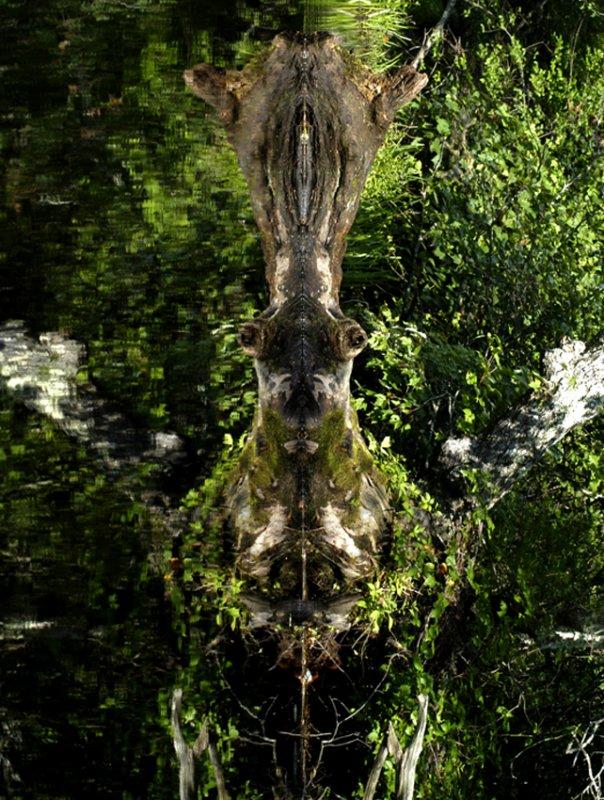 river monster 43