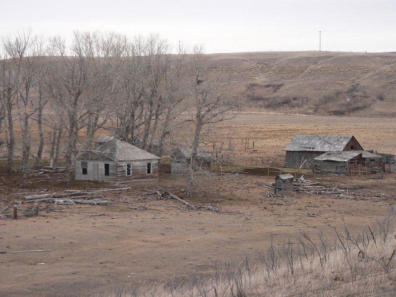 Old homestead.jpg