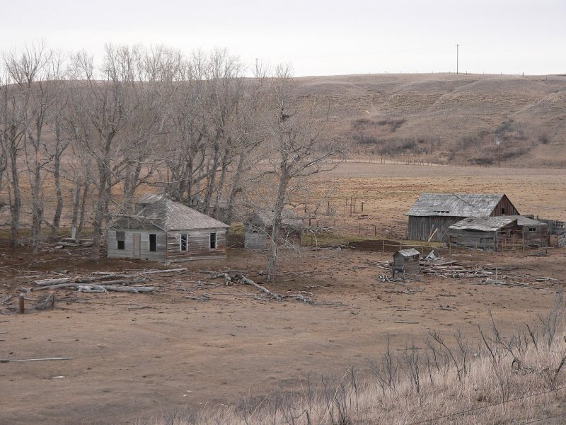 Old homestead, Little Bow near Stavely, Alberta