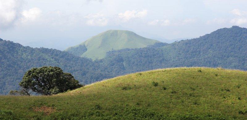 Brahmagiri 09