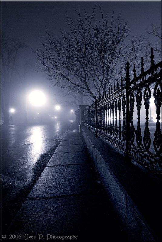 Dans la nuit ...