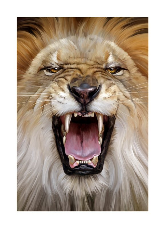 Lions Mouth