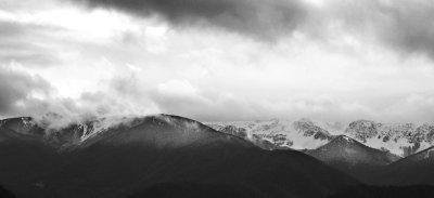 Snow along Hurricane Ridge