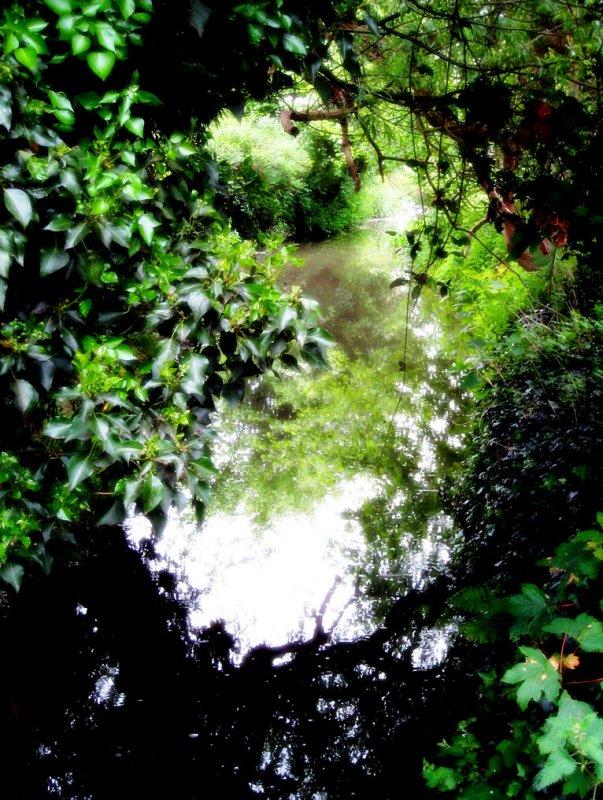 16 May - green stream
