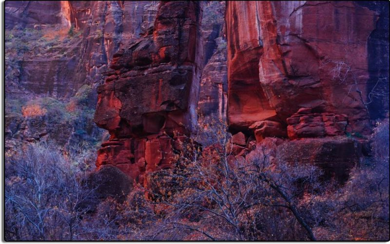 In Zion Canyon