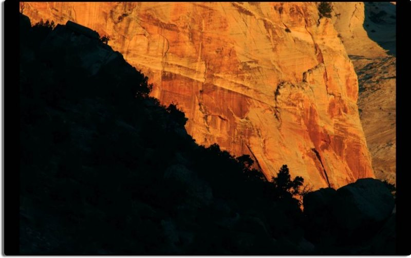 Light and Dark in Zion Canyon