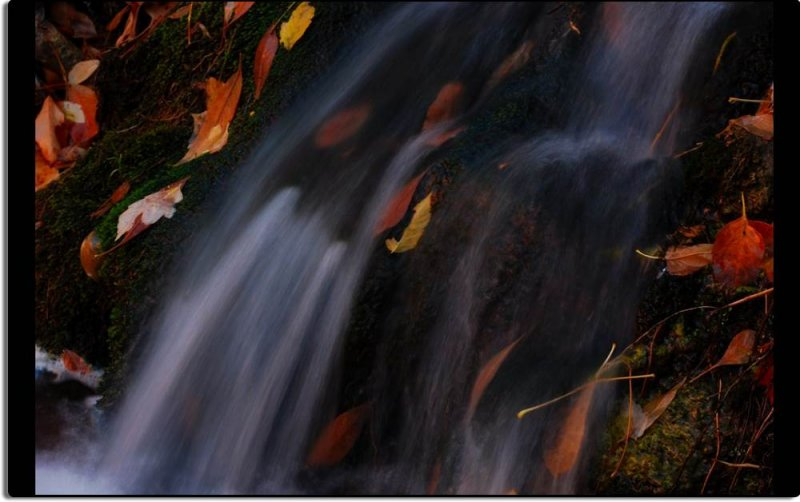 Cascade and Leaves of Autumn
