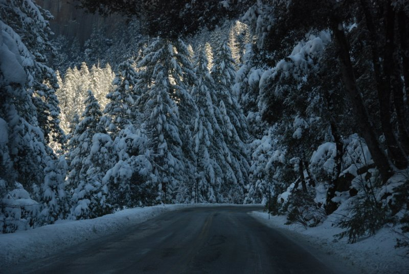On Highway 41