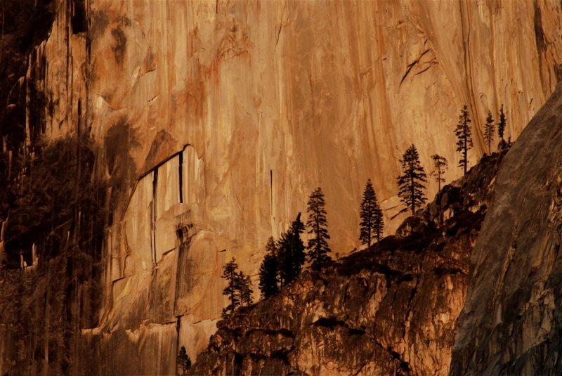 Half Dome Detail - Yosemite