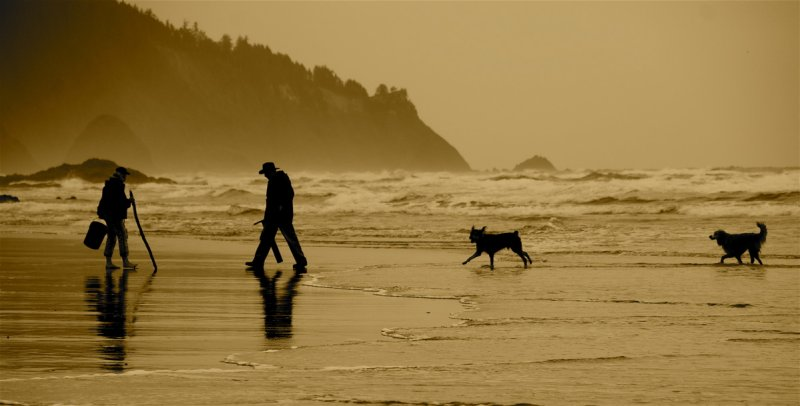 Clammers south of Cannon Beach, Oregon