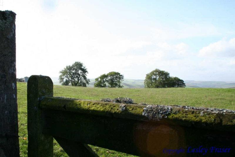 06 Crumhaugh Hill008.JPG