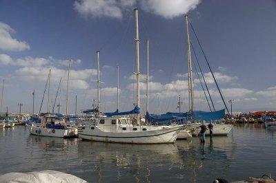 Acre harbour