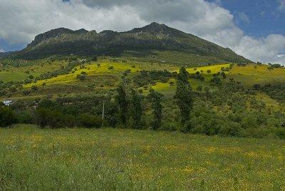 Zahara area landscapes