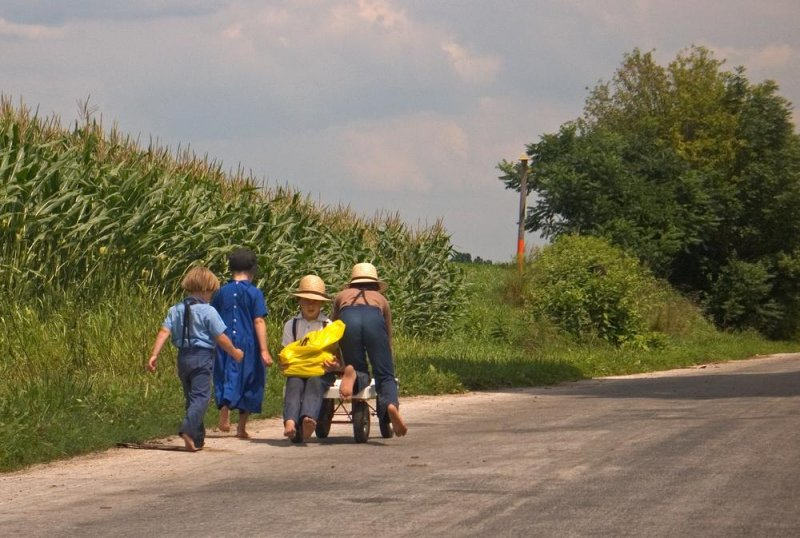 an essay on the amish in the united states of america Home » more subjects » sociology » amish children and their socialization into the amish the amish have existed in the united states in following essay.