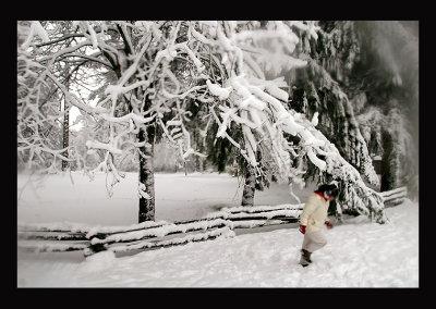 SnowCC05