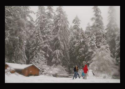 SnowCC012