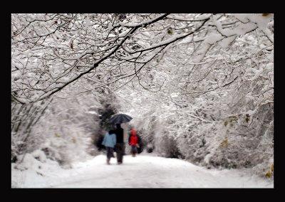 SnowCC015