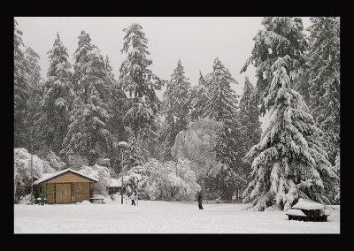 SnowCC024