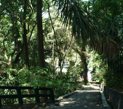 Parque Nacional: Trail in the jungle