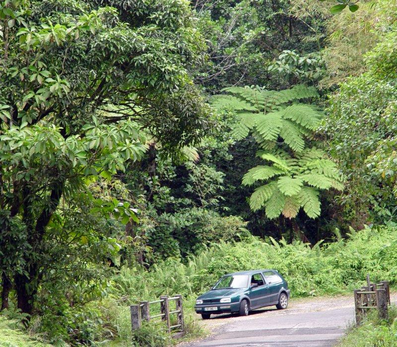 Les Chutes du Carbet, Guadeloupe
