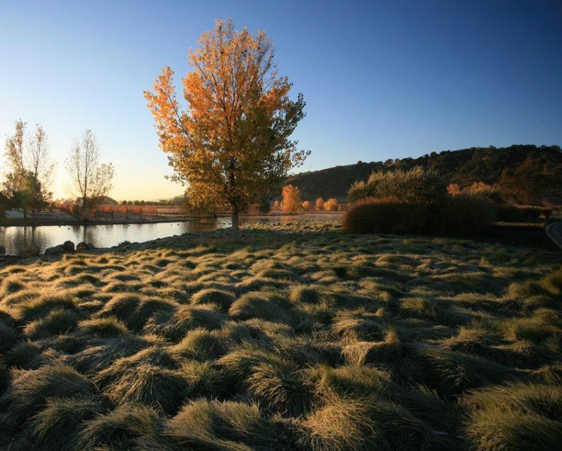 Fall-Pond-5A.jpg