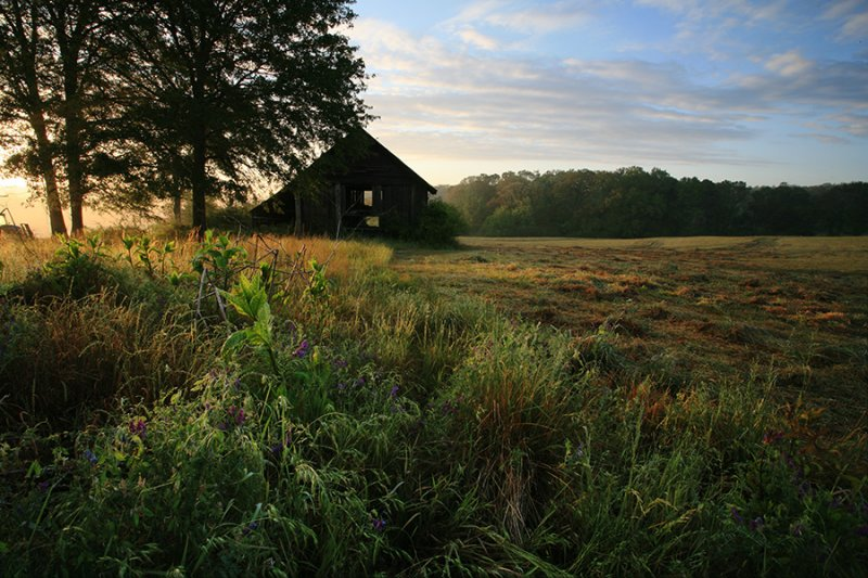Barn-Yard-4WS.jpg