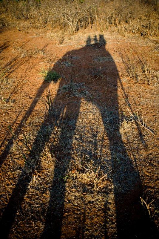 Zimbabwe, Long Shadow