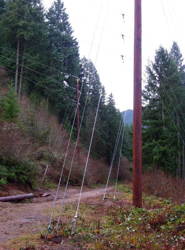 New poles and wires