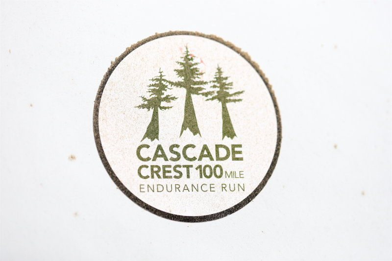 CC100 Logo