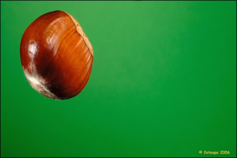 Chestnut 8522
