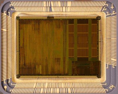chip20_001.jpg