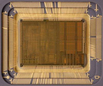 chip21_005.jpg