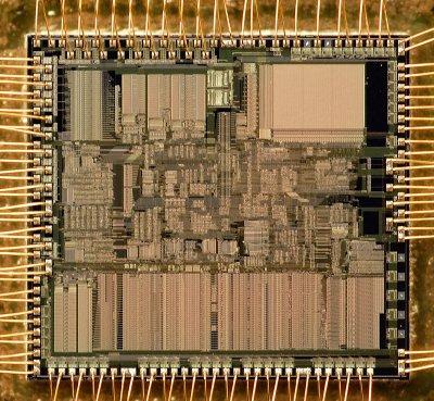 chip25_004.jpg