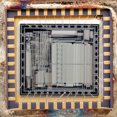 chip38_011.jpg