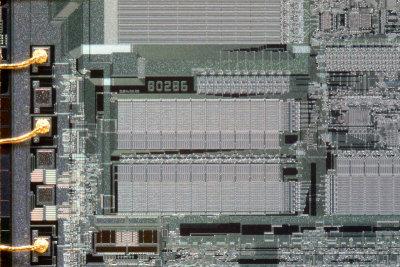chip28_006.jpg