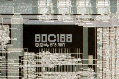 chip34_010.jpg  macro 18:1