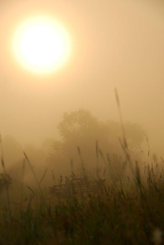 On a foggy morning