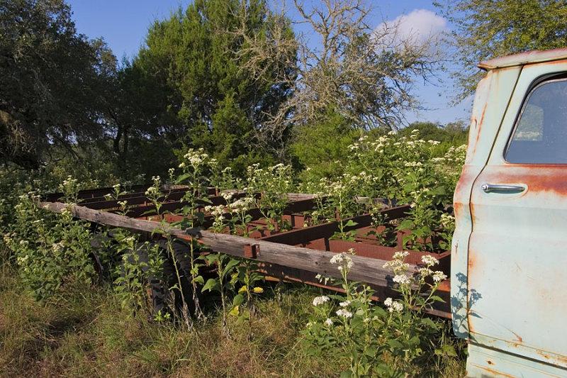 Abandoned Lumber Truck