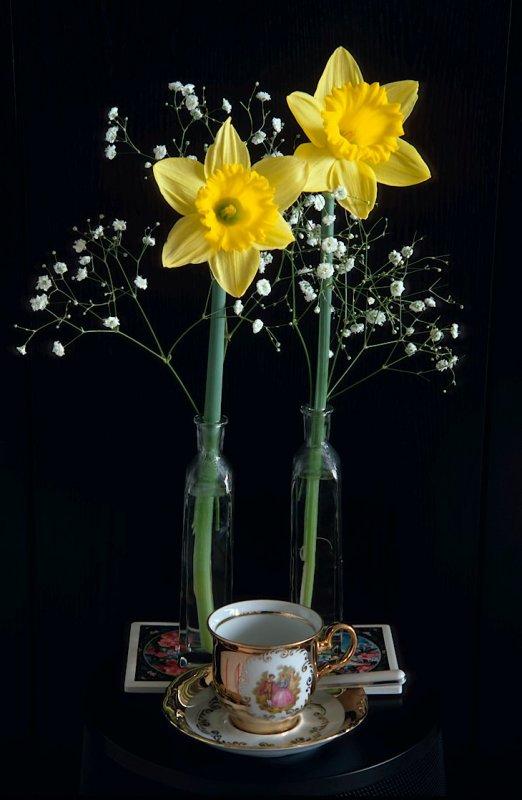 03 Daffodil