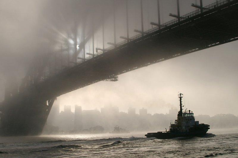 Sydney Fog 1