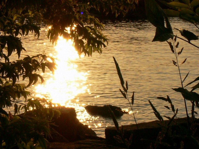 Sunrise at Port Credit Marina