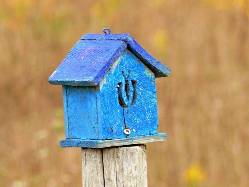 The fence post bird houses at Stokes Bay, Bruce Peninsula, Ontario