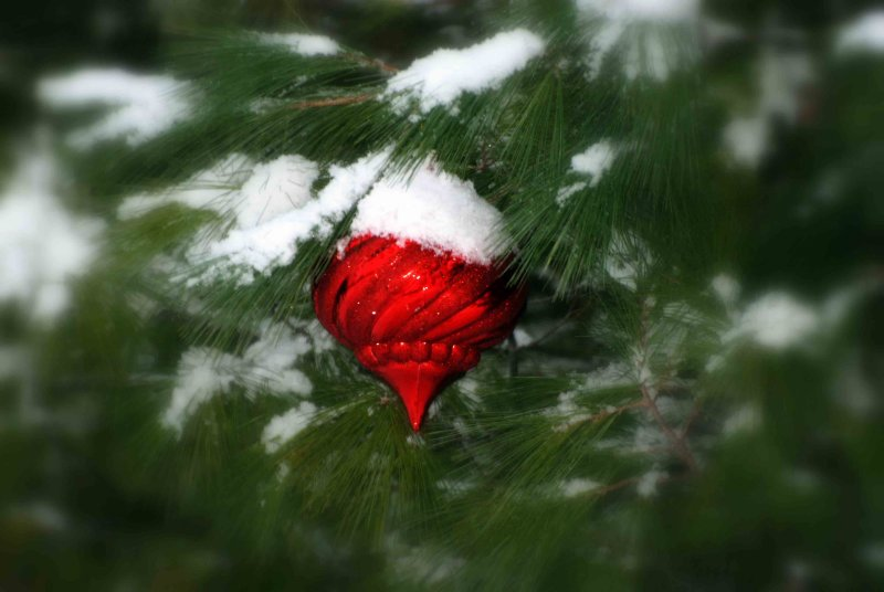 Christmas.....