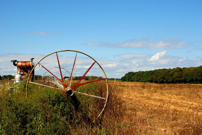 farm field and irrigation