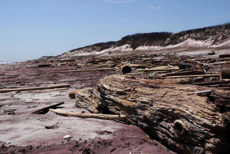 debris at Barrett Beach