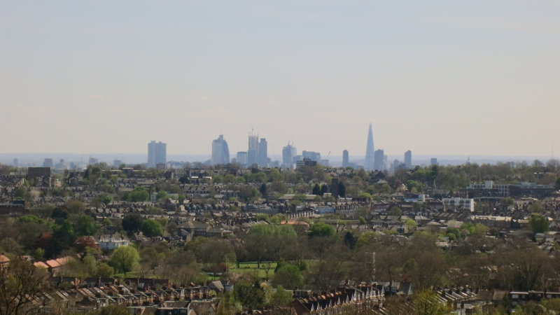 City  Towers  from  the  Ally  Pally.