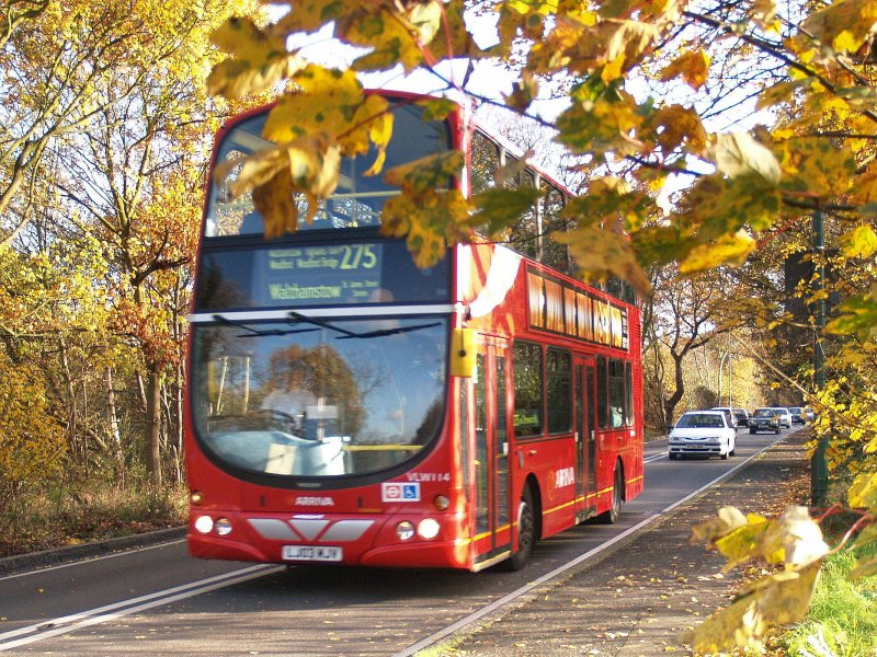 Route  275  in  Chingford  Lane